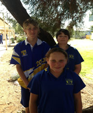 Darling Downs Representatives